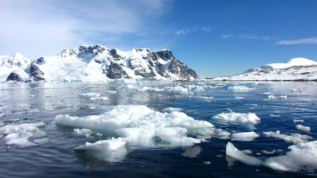 Проект «Реабилитация Арктической зоны»